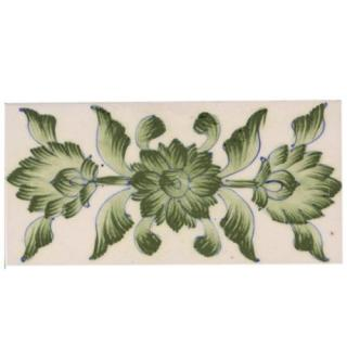 Close Lime Green Leafs and Flowers with White Base